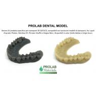 RESINA LCD DENTAL MODEL 500g Prolab Materials